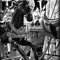 Black Carousel Horse by Tammy Wetzel