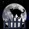 Black Cat And Full Moon 3 by Nina Ficur Feenan