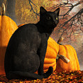 Black Cat At Halloween by Daniel Eskridge