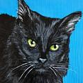 Black Cat by Charleena Treanor