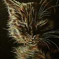 Black Cat Drawing by Lisa Marie Szkolnik