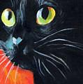 Black Cat Painting Portrait by Svetlana Novikova