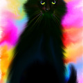 Black Cat Rainbow Sky by Nick Gustafson
