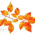 Black Cherry Pressed Leaf Art by Christina Rollo