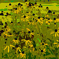 Black Eyed Susan Work Number 21 by David Lee Thompson