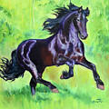 Black Friesian Horse by Anne Cameron Cutri