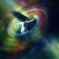 Black Hole by Mary Hood