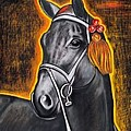Black Horse by Isabell  Von Piotrowski