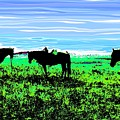 Black Horses ... Montana Art Photo by GiselaSchneider MontanaArtist