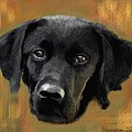 Black Lab by Mia Hansen