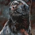 Black Leopard by David Stribbling