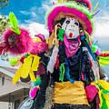 Black Mardi Gras Indian by Michael Neustadt
