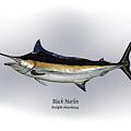 Black Marlin by Ralph Martens