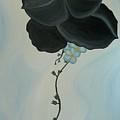 Black Pansi by Marinella Owens