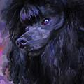 Black Poodle - Square by Jai Johnson