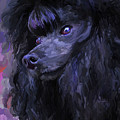 Black Poodle by Jai Johnson