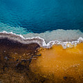 Black Pool Tricolor by Brent Magill