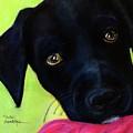 Black Puppy - Shelter Dog by Laura  Grisham