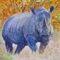 Black Rhino Is The Evening Sun by Samanvitha Rao