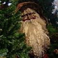 Black Santa by Bob Carey