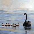 Black Swan And Cygnets by Ryn Shell