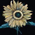 Black Velvet Sunflower by Chrissey Dittus