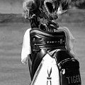 Black White Tiger Woods Bag Clubs  by Chuck Kuhn
