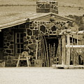 Blacksmith Shop 1867 Cove Creek Fort Utah Photograph In Sepia by Colleen Cornelius