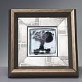 Blacktree Framed by Mykel Davis