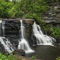 Blackwater Falls  by Michael Ver Sprill