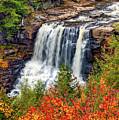 Blackwater Falls  by Steve Harrington