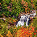 Blackwater Falls Wv by Steve Harrington