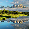 Blame It On The Tetons by Matt Shiffler