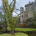 Blarney Castle 3 by Mike McGlothlen