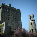 Blarney Castle And Tower County Cork Ireland by Teresa Mucha