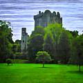Blarney Castle Ireland by Bill Cannon
