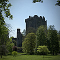 Blarney Castle Ireland by Teresa Mucha