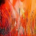 Blaze by Yvette Sikorsky