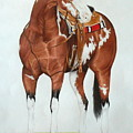Blazing Saddles by Louise Green