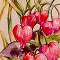 Bleeding Hearts by Laurel Adams