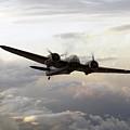 Blenheim Flight by J Biggadike