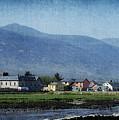Blennerville Windmill Ireland by Teresa Mucha
