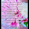 Blessed Are You by Debra Lynch