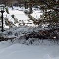 Blizzard Aftermath by Dennis Pops Tangeman