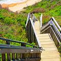 Block Island Beach - Rhode Island by Lourry Legarde