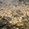 Block Island Low Tide II by Anthony Morretta