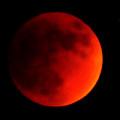 Blood Moon by Maria Reverberi
