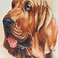Bloodhound by Barbara Keith