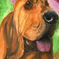 Bloodhound Dog Art by Mary Jo Zorad
