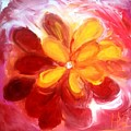 Bloom by Heather Randazzo